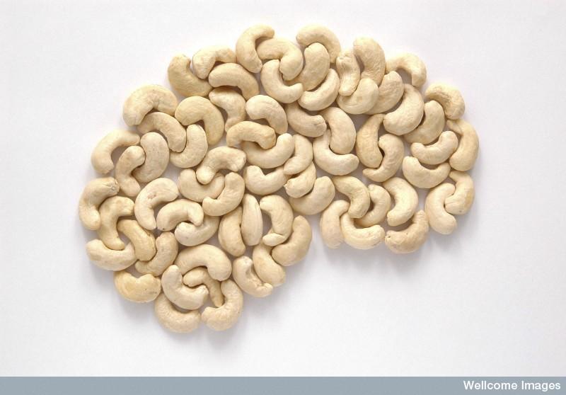 Contrôler l'épilepsie grâce à la thérapie diététique en comprimé